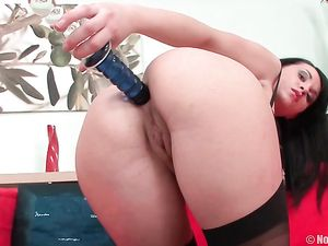 Hot Lingerie Babe Takes A Toy In The Asshole
